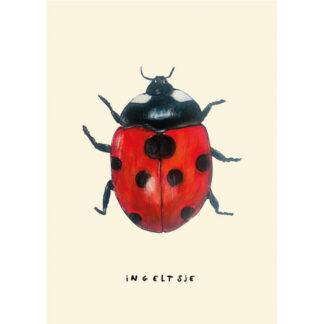 Poster lieveheersbeestje A4 formaat. Ingeltsje illustratie van Atelier Pjut