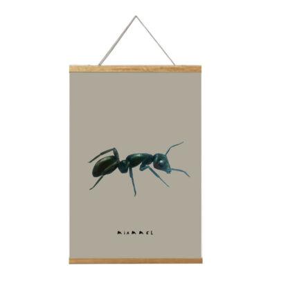 poster mier 20x30 van atelier Pjut. Uit de serie insecten en oer natoer. In lijst
