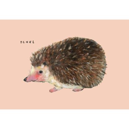 kaart 10 x 15 van kleine egel. illustratie van Inge Adema. Pjut