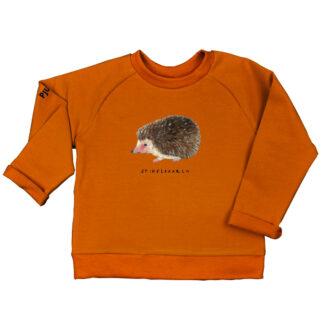 zachte sweater met egeltje van GOTS gecertificeerd katoen. voor kinderen van 2-6 jaar